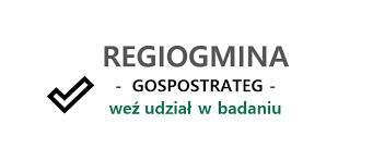 """Projekt badawczy dla przedsiębiorców GOSPOSTRATEG – """"Regiogmina"""" – Gmina  Rogóźno"""